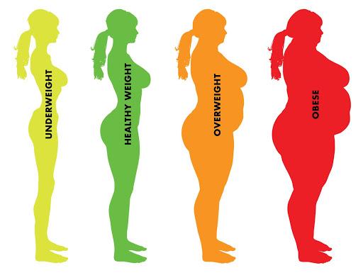 Bí quyết vàng để không bị thừa cân, béo phì: Luôn giữ được trọng lượng chuẩn như ý - Ảnh 1.
