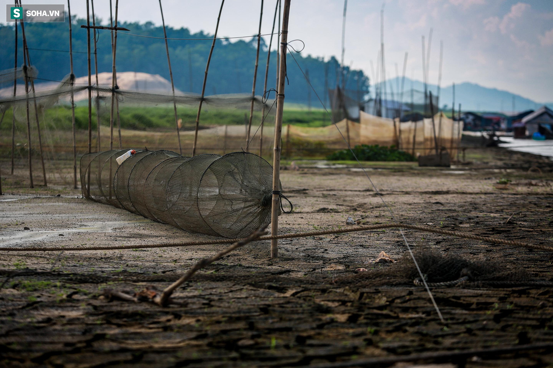 [ẢNH] 200 nhà bè mắc cạn giữa thảm cỏ xanh mướt ở lòng hồ Trị An - Ảnh 7.