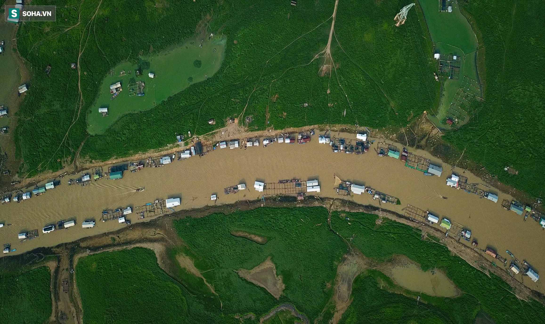 [ẢNH] 200 nhà bè mắc cạn giữa thảm cỏ xanh mướt ở lòng hồ Trị An - Ảnh 9.
