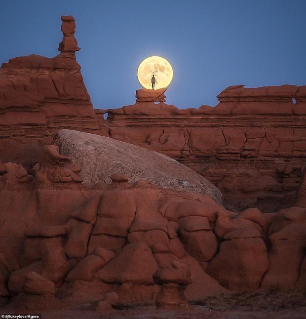 Đây là bức ảnh được chụp bởi nhiếp ảnh gia Luke Simpson, người giành phần thưởng 1.000 đô la Mỹ (khoảng 23 triệu VNĐ) cho chiến thắng chung cuộc.