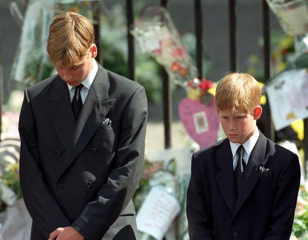 Hé lộ cuộc gọi cuối cùng với con trai của Công nương Diana trước khi ra đi, điều khiến hai vị Hoàng tử nuối tiếc suốt cuộc đời - Ảnh 1.