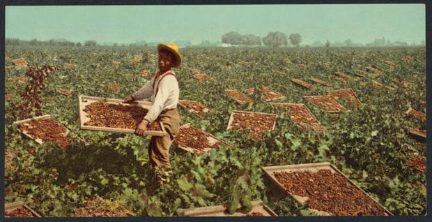 Chiêm ngưỡng những bức ảnh màu hiếm hoi đầu tiên trên thế giới: Một số còn lỗi màu, số khác đẹp như được photoshop 7749 lần - Ảnh 23.