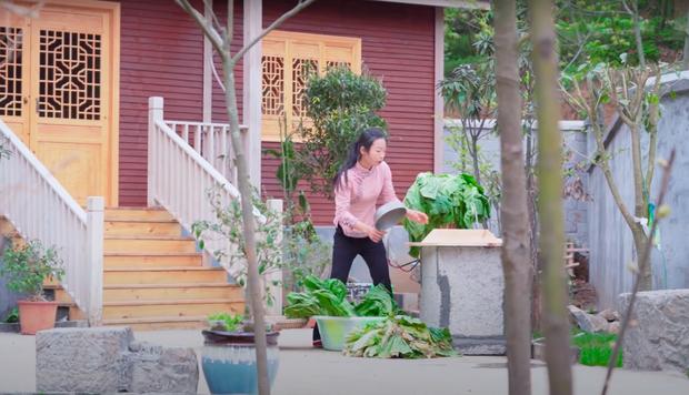 """Ngay tại Trung Quốc đã có loạt vlogger phong cách na ná Lý Tử Thất, có người còn gần như """"copy"""" nguyên si - Ảnh 21."""