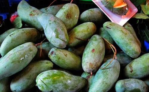 9 loại xoài cực ngon đang có mặt trên thị trường Việt, hot nhất là xoài tí hon nằm nhỏ gọn trong lòng bàn tay - Ảnh 9.