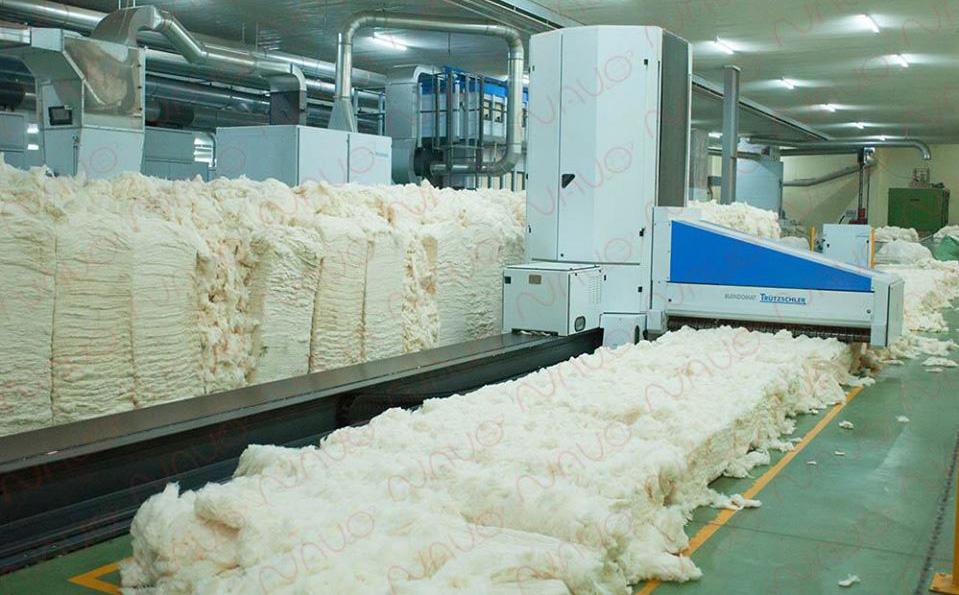 Bị kẹt trong máy bông ở khu công nghiệp tỉnh Tây Ninh, 1 người tử vong