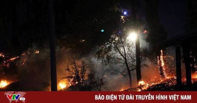 Nắng nóng tới 40 độ gây cháy rừng tại châu Âu - Ảnh 1.