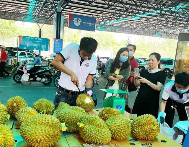 Sầu riêng Malaysia giá tiền triệu vẫn cháy hàng giữa lúc sầu riêng Việt rẻ rề - Ảnh 1.