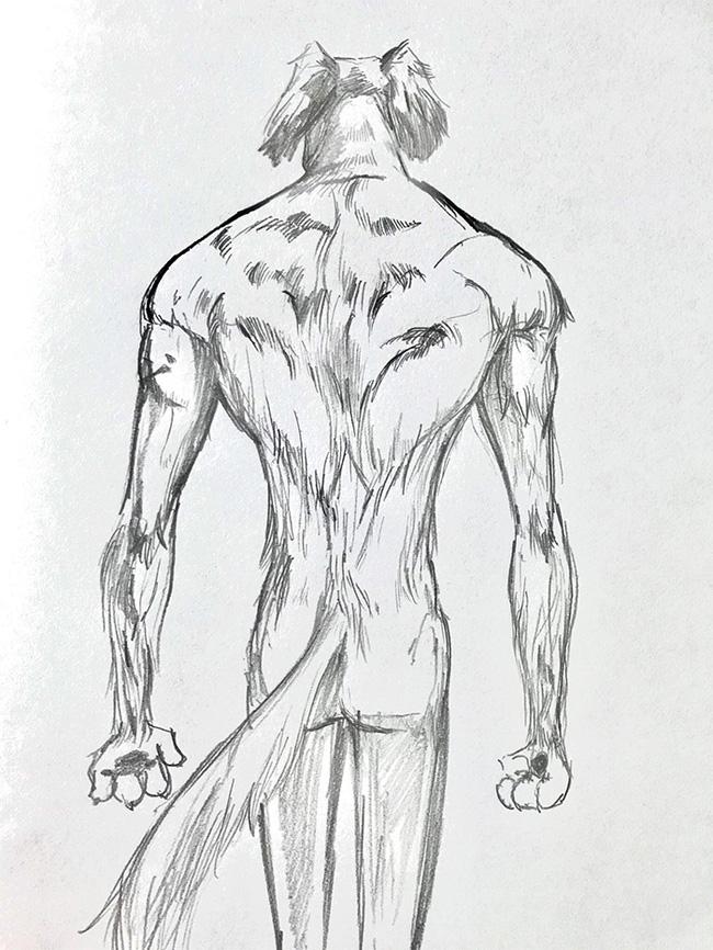 Chú chó vai u thịt bắp khiến dân mạng tưởng là ngôi sao thể hình - Ảnh 5.