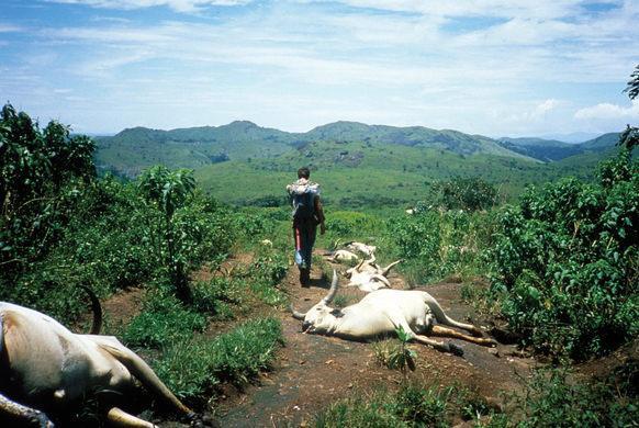 Vén màn bí mật những hồ nước tử thần tại Châu Phi - Ảnh 1.