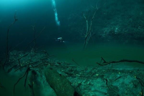Xuất hiện dòng sông ma ở độ sâu 30m dưới nước - Ảnh 1.
