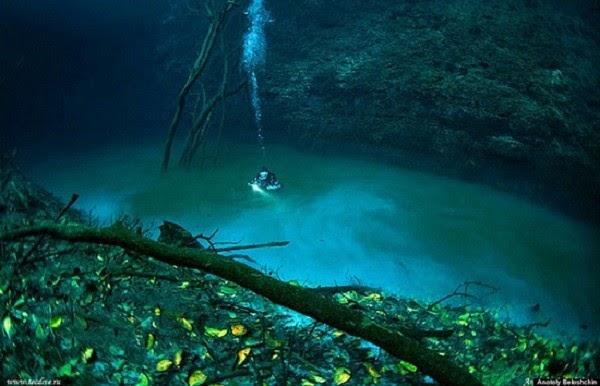 Xuất hiện dòng sông ma ở độ sâu 30m dưới nước - Ảnh 2.
