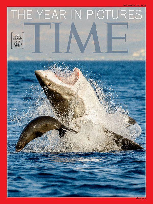 Cá mập hung tợn tấn công người chơi dù lượn khiến ai cũng chắc chắn rằng nạn nhân sẽ bỏ mạng nhưng câu chuyện thật lại khác hoàn toàn - Ảnh 4.
