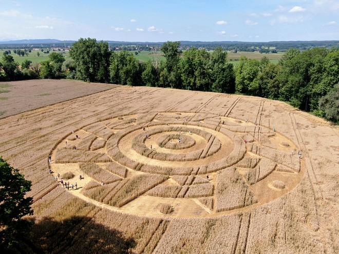 Phát hiện vòng tròn khổng lồ đột nhiên xuất hiện bí ẩn giữa cánh đồng tại Đức chỉ sau một đêm - Ảnh 1.