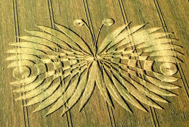 Phát hiện vòng tròn khổng lồ đột nhiên xuất hiện bí ẩn giữa cánh đồng tại Đức chỉ sau một đêm - Ảnh 5.