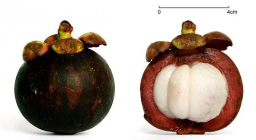 10 loại trái cây chống lão hóa hàng đầu - Ảnh 5.