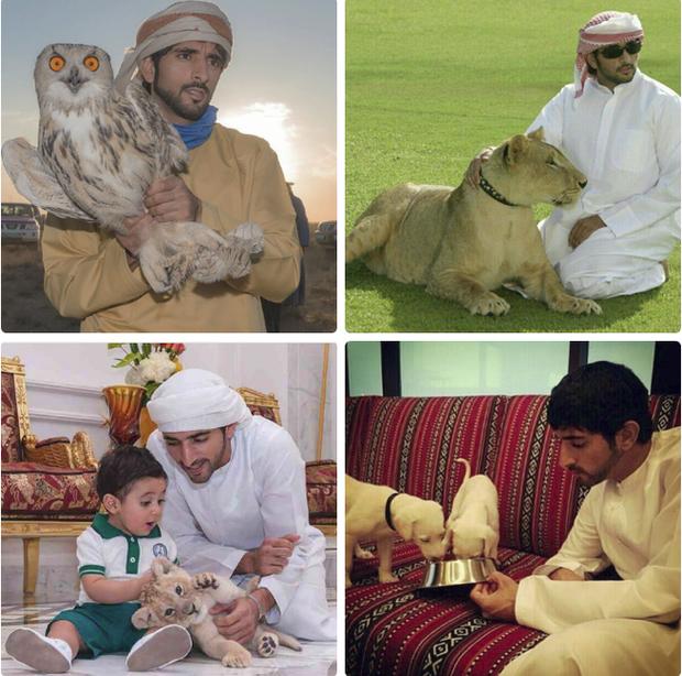 Thái tử đẹp nhất Dubai: Gây ấn tượng bởi thành tích học tập cực khủng, đã vậy còn tốt bụng đến mức khiến ai nấy phải phì cười - Ảnh 2.