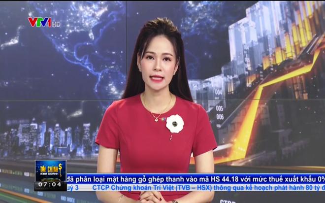 VTV chính thức xin lỗi vụ BTV dùng từ ngữ nhạy cảm để nói về người bán hàng rong - Ảnh 3.