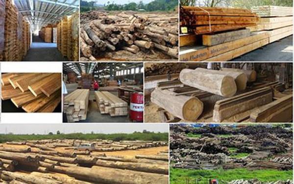Chế biến gỗ và sản xuất sản phẩm từ gỗ ảnh hưởng mạnh bởi Covid-19 - Ảnh 1.