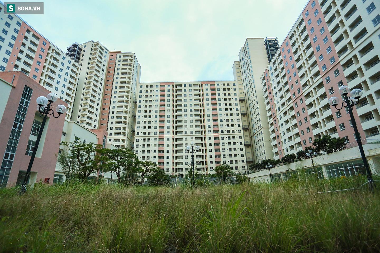 Toàn cảnh khu tái định cư đồ sộ ở TP.HCM có hàng nghìn căn hộ không ai ở, đang chờ bán đấu giá - Ảnh 9.