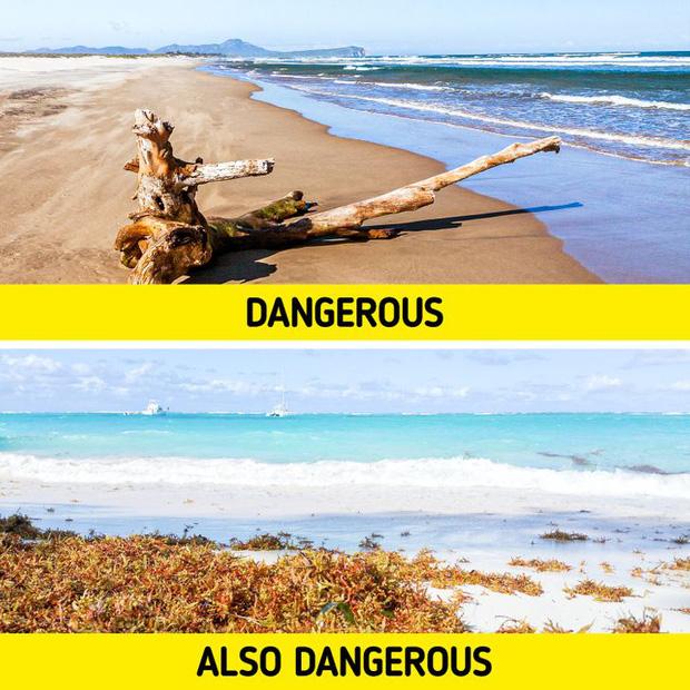 7 mối nguy kinh khủng nhất có khả năng khiến chúng ta phải bỏ mạng khi đi tắm biển, và cách để đảm bảo an toàn cho bạn - Ảnh 4.