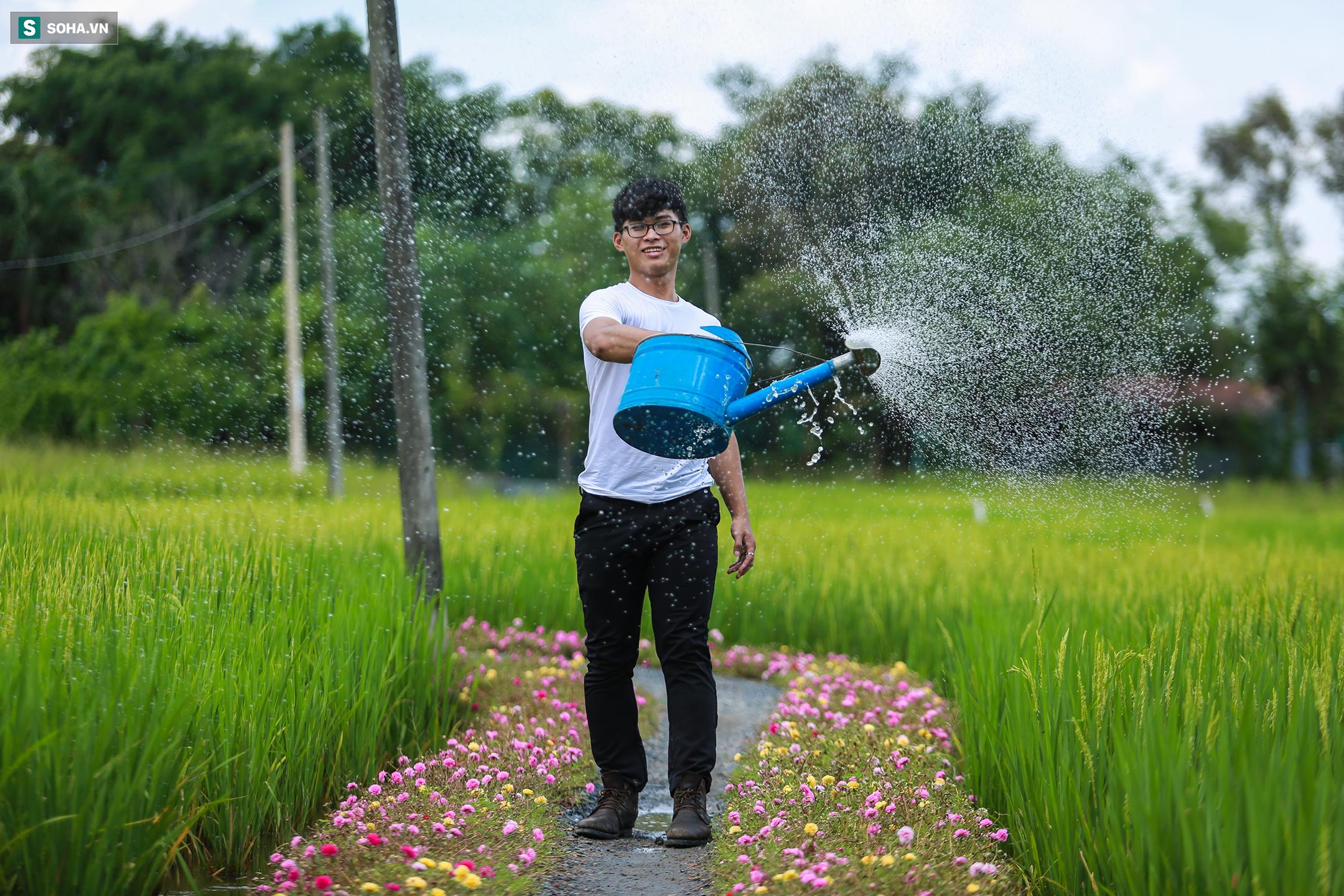 [Ảnh] Con đường hoa mười giờ len lỏi giữa đồng lúa xanh đẹp như tranh ở Sài Gòn - Ảnh 13.