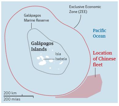 Guardian: Nghiên cứu tàu cá Trung Quốc, chuyên gia sốc vì một số liệu gấp hơn 50 lần Mỹ - Ảnh 1.