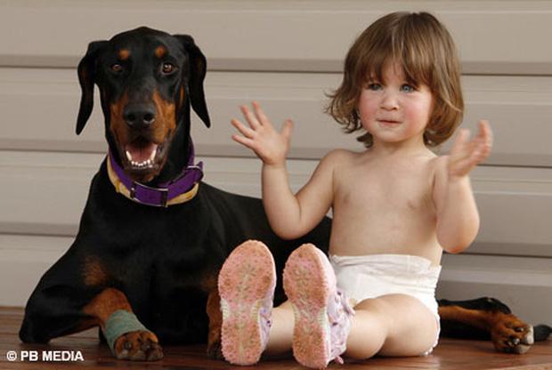 Thấy chú chó mới nuôi hung dữ ném con gái ra xa, người mẹ hoảng sợ tột độ nhưng khi biết sự tình liền mang ơn con vật suốt đời - Ảnh 2.