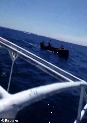 Cá heo con chết trên biển bị tràn dầu, cá heo mẹ vẫn cố đẩy đầu con lên khỏi mặt nước rồi qua đời theo con không lâu sau đó - Ảnh 10.
