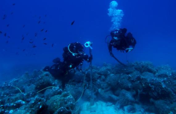 Cận cảnh bảo tàng dưới nước du khách tự do bơi lội ngắm xác tàu cổ đại - Ảnh 8.