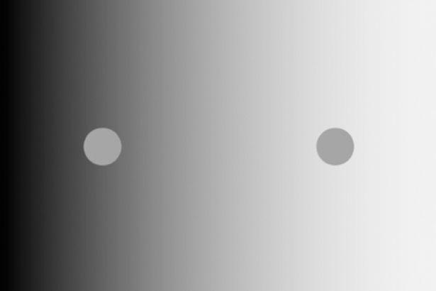 Bức hình ảo ảnh thị giác gây lú cực mạnh, dân tình căng mắt nhìn mà chẳng hiểu lý do - Ảnh 2.