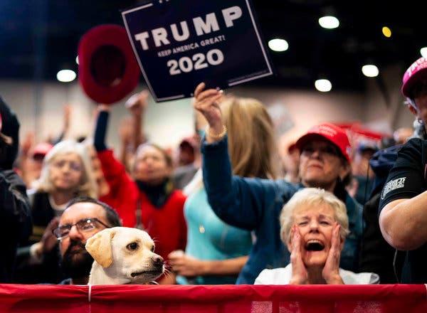 Tổng thống Mỹ không có quyền hoãn bầu cử: Ý định thực sự và thủ thuật của ông Trump trước chặng đua nước rút - Ảnh 3.