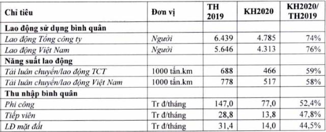Lương phi công, tiếp viên hàng không Vietnam Airlines sẽ bị cắt giảm phân nửa trong năm 2020 - Ảnh 1.