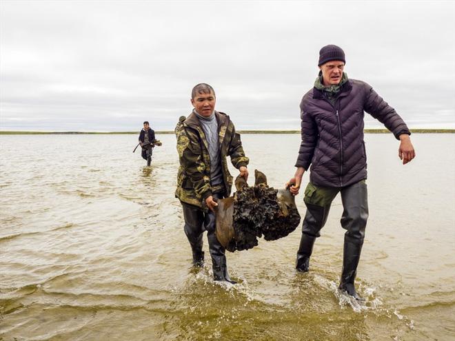 Băng tan tại Bắc Cực để lộ hài cốt voi ma mút 10.000 năm tuổi vẫn còn nguyên gân và da - Ảnh 3.