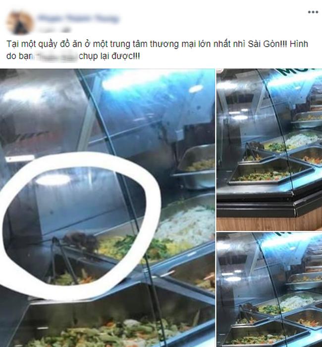 Kinh hãi những chú chuột vô tư gặm nhấm đồ ăn trong quầy bán thức ăn sẵn của trung tâm thương mại ở Sài Gòn - ảnh 1