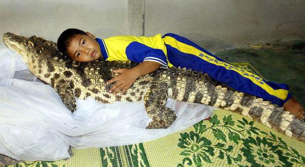 Đứa trẻ ôm ấp bé cá sấu mà mặt thản nhiên như không có gì và hàng loạt thể loại thú cưng không phải ai cũng dám nuôi - Ảnh 1.