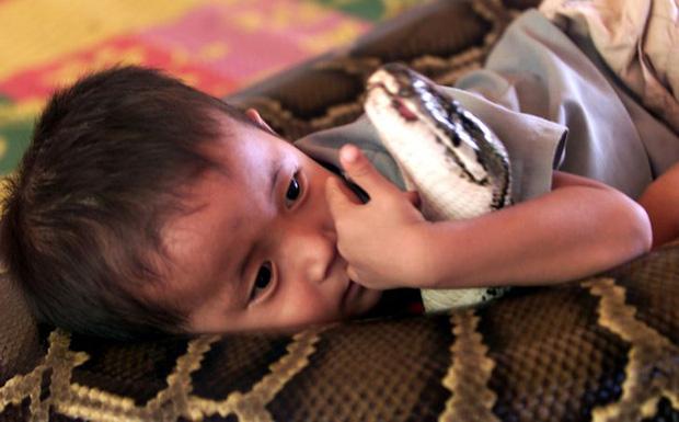 Đứa trẻ ôm ấp bé cá sấu mà mặt thản nhiên như không có gì và hàng loạt thể loại thú cưng không phải ai cũng dám nuôi - Ảnh 2.