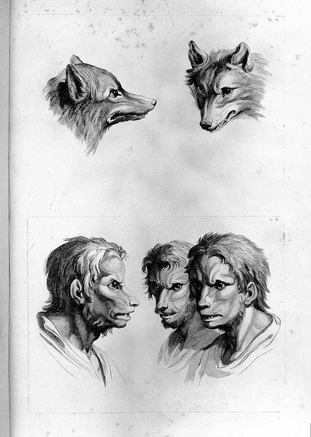 Những vụ săn lùng người sói tàn bạo và khủng khiếp từng diễn ra ở châu Âu thời xưa - Ảnh 2.