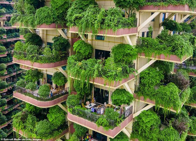 Trung Quốc tham vọng xây thiên đường sinh thái nhưng lại hóa thành phố ma vì… muỗi - Ảnh 3.