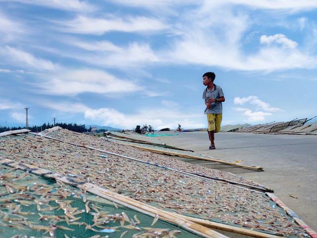 Ngư dân Hà Tĩnh trúng đậm cá cơm, mỗi ngày thu tiền triệu - Ảnh 14.