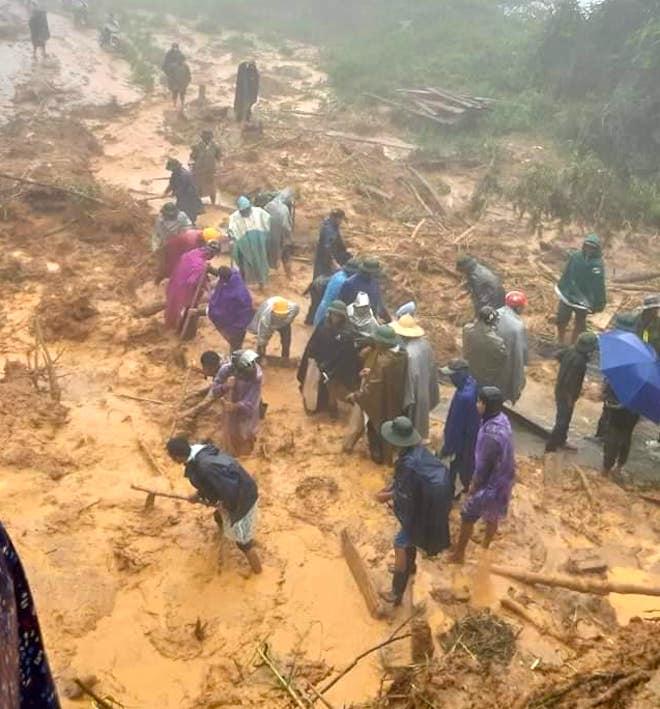Cơn bão số 5: Sạt lở đất sau bão vùi lấp đàn trâu 8 con ở Nghệ An - Ảnh 2.