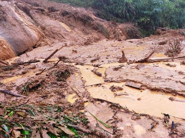 Cơn bão số 5: Sạt lở đất sau bão vùi lấp đàn trâu 8 con ở Nghệ An - Ảnh 3.