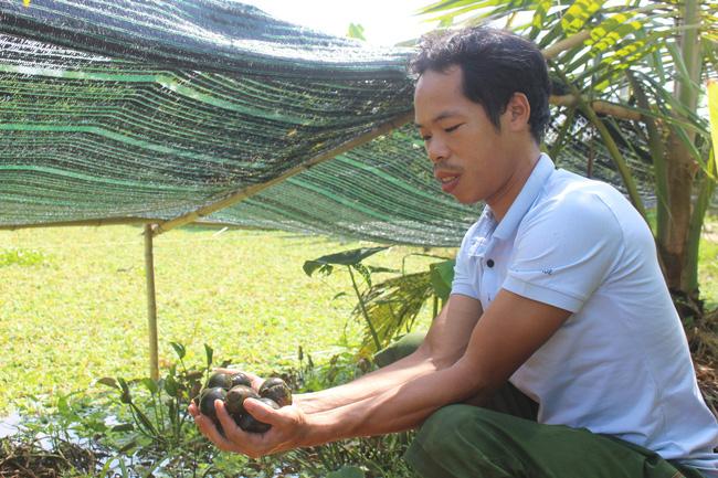 Nam Định: Nuôi con chậm chạp, bò quanh ao, tới mùa đẻ rõ lắm, anh nông dân thành tỷ phú - Ảnh 5.