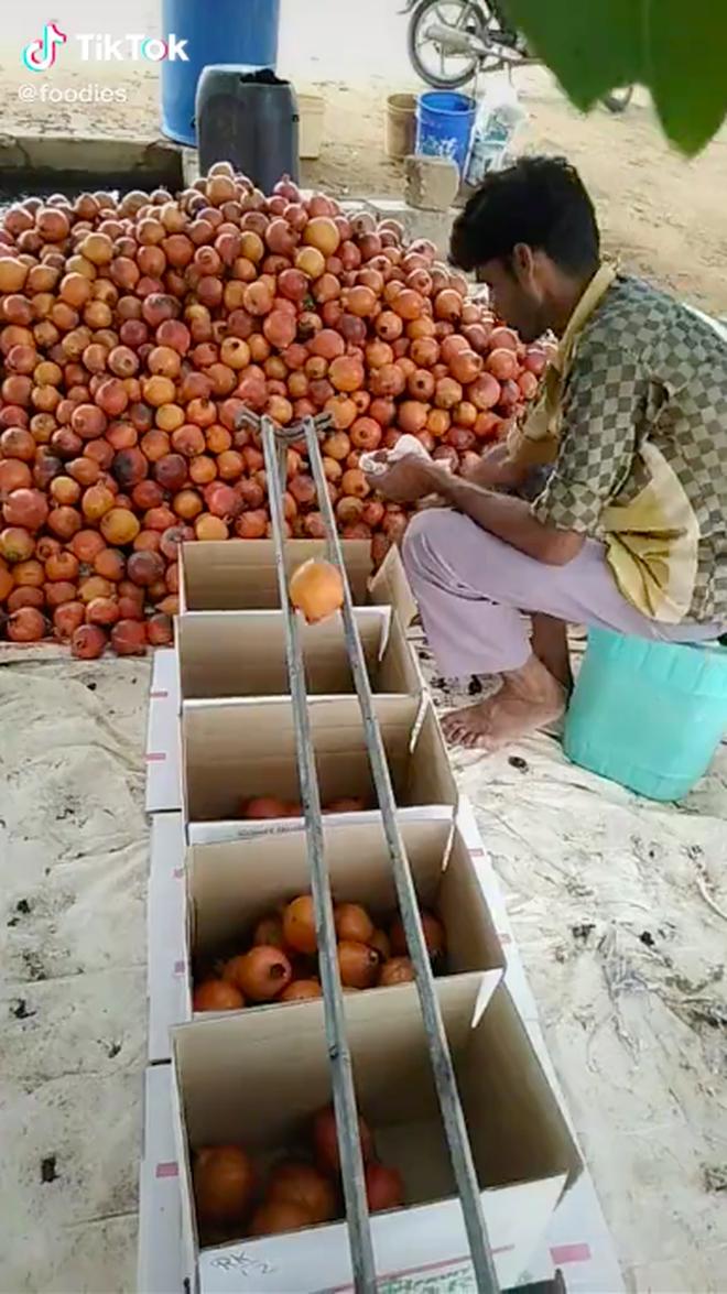 Bất ngờ trước cách chàng trai nước ngoài phân loại trái cây cực thông minh, tất cả đều nhờ… 2 thanh sắt như thế này! - Ảnh 3.