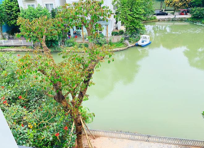 Cuộc sống nhung lụa, giàu sang của Lã Thanh Huyền ở tuổi 35 - Ảnh 4.