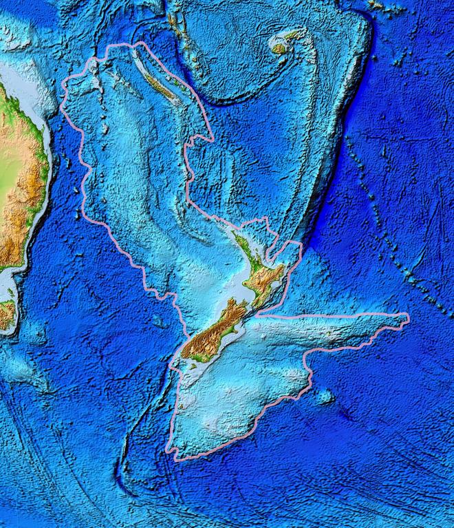 Chim cánh cụt cổ đại cao bằng người từng sống ở lục địa mất tích thứ 8 của Trái Đất - Ảnh 4.