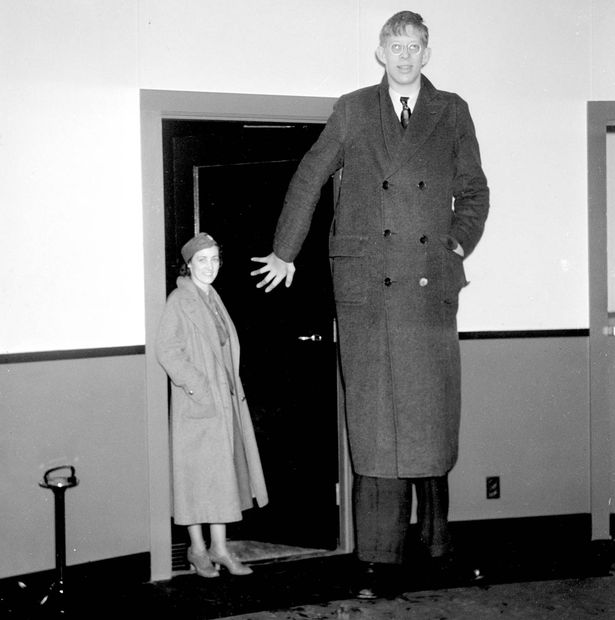 10 kỷ lục Guinness chưa từng bị phá vỡ: Từ người cao nhất cho đến văn phòng lớn nhất thế giới - Ảnh 3.