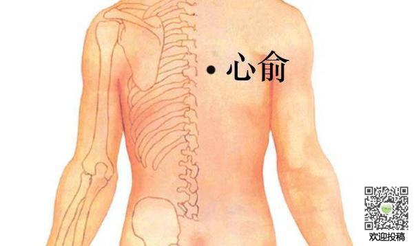 Huyệt Thần Môn: Cánh cửa thần mở kho thuốc 0 đồng hỗ trợ chữa nhiều bệnh từ thân đến tâm - Ảnh 7.