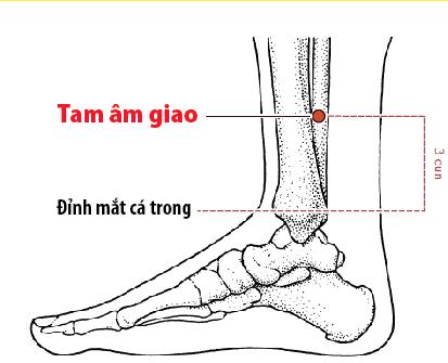 Huyệt Thần Môn: Cánh cửa thần mở kho thuốc 0 đồng hỗ trợ chữa nhiều bệnh từ thân đến tâm - Ảnh 9.