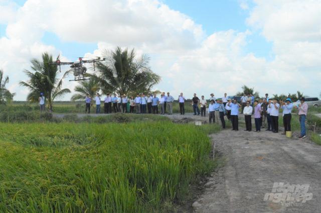TGĐ công ty sản xuất gạo sạch lớn nhất Việt Nam: Vì văn hóa xuất khẩu kém của nhiều doanh nghiệp, gạo Việt đáng ra có thể bán với giá 2.000 - 3.000 USD/tấn, thì hiện tại chỉ thu về được hơn 1.000 USD/tấn - Ảnh 3.