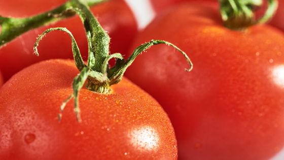 Cà chua là trái cây hay rau? Câu hỏi tưởng đơn giản nhưng hành trình tìm đáp án lại phức tạp đến không ngờ - Ảnh 2.